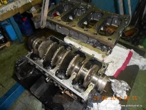 DSCN4181