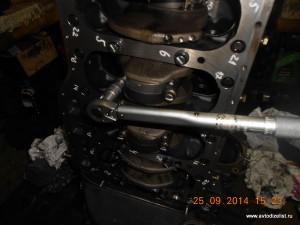 DSCN4203