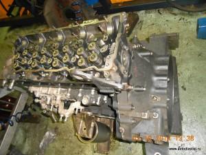 DSCN4255