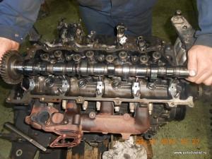 DSCN4262